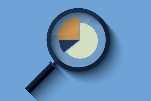 Organisational staff surveys reports
